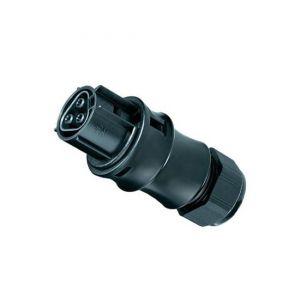 Buchse Male dreiadrig Wieland RST20i3 schwarz